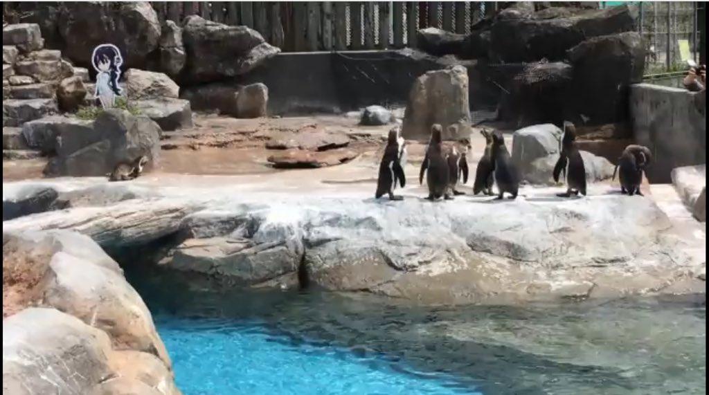 [Imagen: pinguino3.jpg]