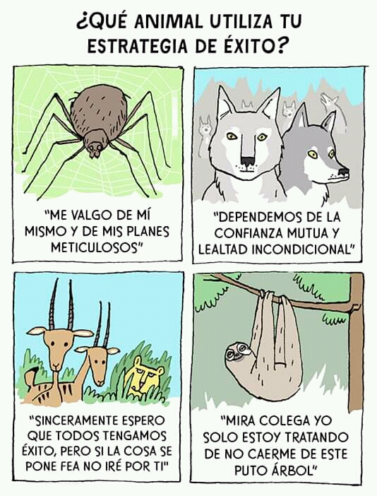 [Imagen: animales.jpg]
